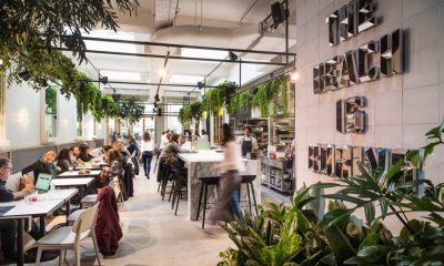 Coffee Shops: Great Places to Enjoy Coffee